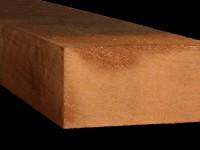 Western Red Cedar massief 100 x 200
