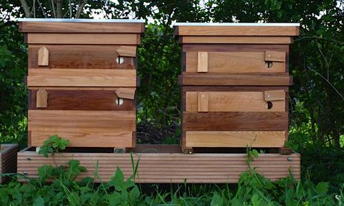 Bijenkast Western Red Cedar Cedarland