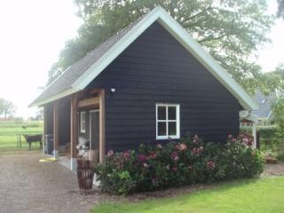 Western Red Cedar Zweeds rabat Select Tight Knotty met zwarte coating Cedarland