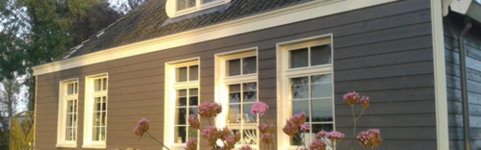 Western Red Cedar Zweeds rabat STK grijze coating